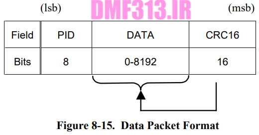 Data Packet Format